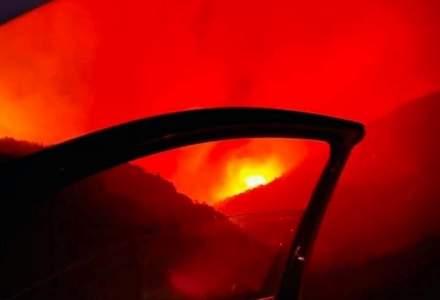 Nu numai Grecia suferă: incendiile necontrolate fac ravagii în Turcia