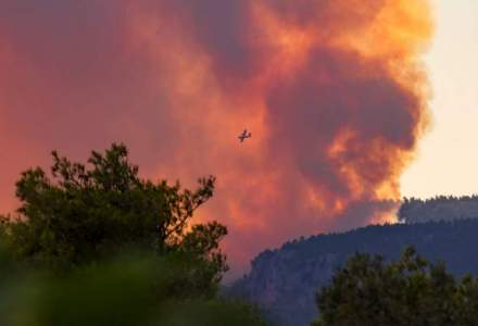 Guvernul Greciei va plăti 150.000 euro pentru fiecare casă distrusă de incendii