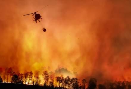 Italia, în luptă cu o caniculă record de 49 de grade Celsius și cu peste 500 de incendii