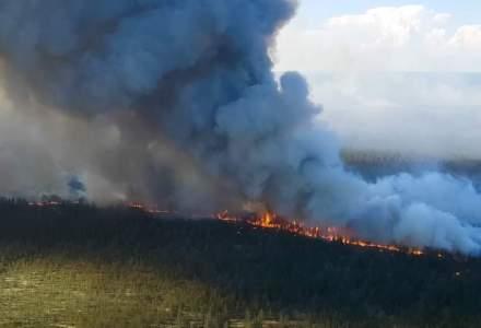 ONG-iștii trag un semnal de alarmă: România ar trebui să fie pregătită pentru a preveni un incendiu precum cel din Grecia