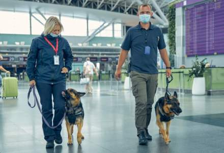 Bode va introduce câini care depistează COVID pe mai multe aeroporturi din țară