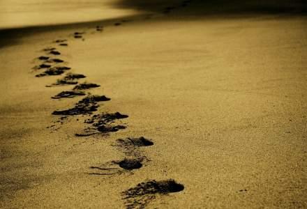 Hoții de nisip, spaima Sardiniei. Tot ei fac și comerț ilegal cu scoici și pietricele
