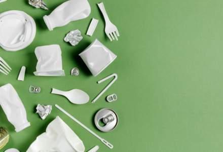 Guvernul va adopta un proiect de reducere a impactului anumitor produse din plastic asupra mediului