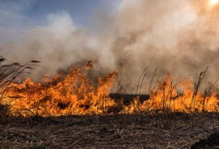 143 de incendii au avut loc în România într-o singură zi