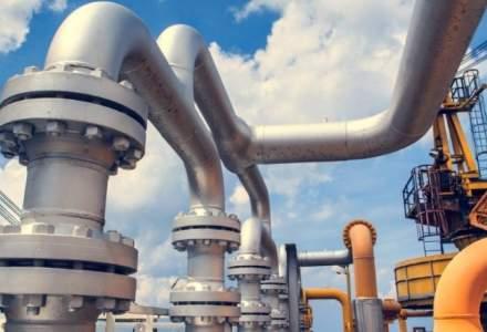 Europa trebuie să se pregătească mai bine pentru o criză a gazelor, spune un diplomat american