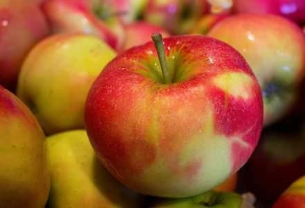 Avertisement pe piata fructelor si legumelor: cele romanesti ar putea sa dispara de pe tarabe