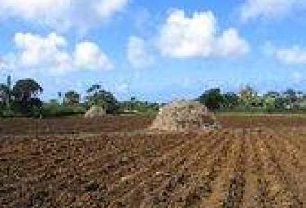 Proiecte de dezvoltare rurala in valoare de 10,2 mld. euro