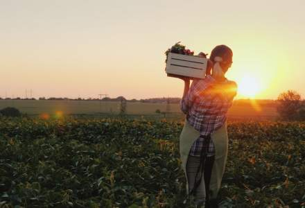 Secretar de stat MADR, despre fermierii nevoiți să arunce producția: Statul nu poate doar să dea ajutoare sociale, iar fermierii să nu facă nimic