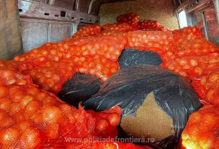 Un român a vrut să treacă granița cu 800 de kg de tutun ascuns printre saci cu ceapă