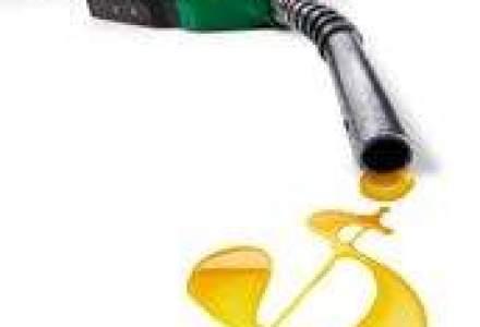 Deloitte: Piata de M&A din energie isi revine in 2010
