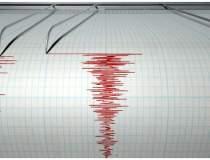 Un cutremur de 3,1 grade s-a...