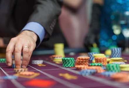 Povestea unui pariu de 2,2 milioane lei   Cum s-a pregătit o firmă românească pentru o piață cu potențial de miliarde