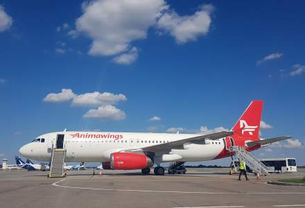 Aegean Airlines devine acționar majoritar al companiei Animawings