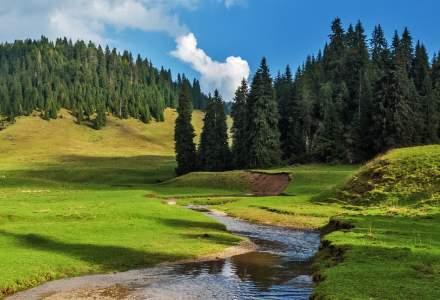 Drumeții de-o zi în România: unde vă puteți înscrie