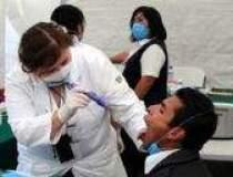 Gripa porcina: 75 cazuri noi...