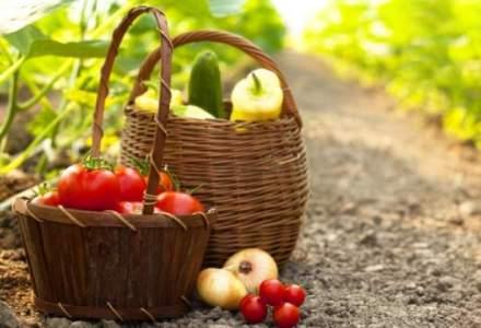 Groupama a subscris 28 MIL. lei pe segmentul de asigurari destinte domeniului agricol
