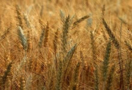 Catalin Predoiu: Vrem facilitati pentru producatorii agricoli, stimularea comasarii terenurilor si arendarii
