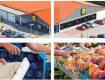 Lidl buys Plus Romania retail...