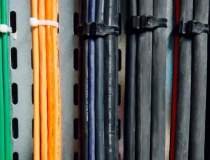 LS Cable & System, interesat...