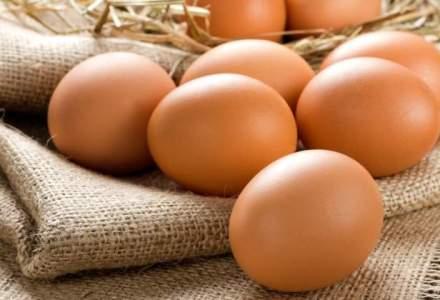 Ouale, mai ieftine cu 20% in ferme, dar magazinele nu au scazut pretul