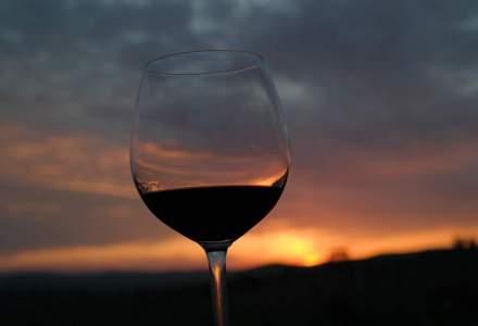 Comoara austriecilor din Romania: planurile Cramei Liliac din Transilvania si cum arata unul dintre cele mai tinere branduri viticole dupa investitii de mil. de euro