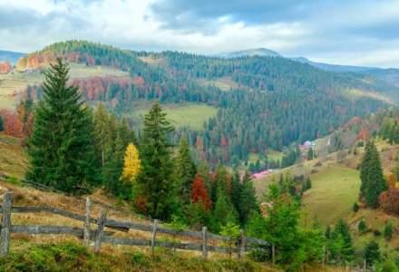 Romsilva cheltuieste anual 16 mil. lei pentru parcuri nationale si incaseaza 0,6 mil. lei