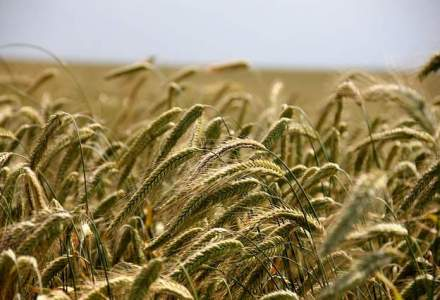 Comisia Europeana aloca peste 8 MLD euro pentru dezvoltare rurala Romaniei