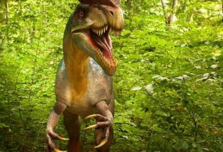 Cel mai mare parc cu dinozauri din sud-estul Europei se deschide vineri la Rasnov
