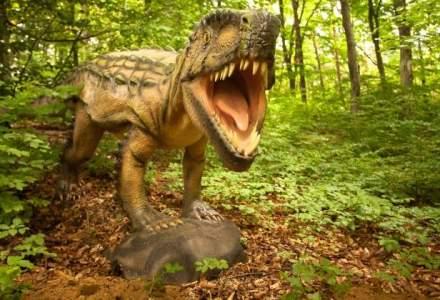 Trei ingineri silvici au luat 3,5 mil. euro de la UE ca sa deschida un cel mai mare parc cu dinozauri din sud-estul Europei