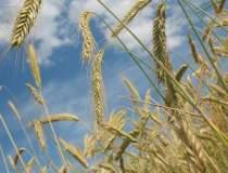 Comisia de agricultura a...