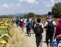 Zece imigranti raniti in...