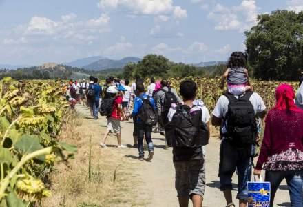 Zece imigranti raniti in Ungaria, dupa ce camioneta condusa de un roman s-a rasturnat