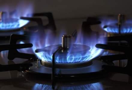 ANRE: Romania ar putea renunta de anul viitor la importurile de gaze naturale