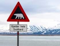Norvegia ar putea trimite...