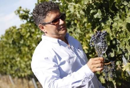 Vanzari in crestere cu 15% pentru producatorul vinurilor Halewood