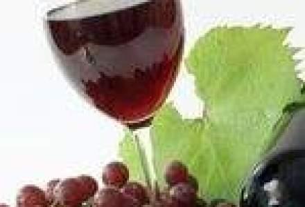 Ghimpu sugereaza cautarea altor piete de desfacere pentru vinurile din R. Moldova