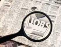 Numarul joburilor online in...