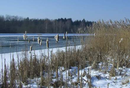 Trafic fluvial a fost inchis pe Dunare, in apropiere de Moldova Veche