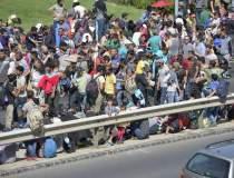 Zeci de imigranti, prinsi...