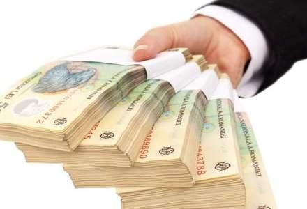 Ministerul Economiei spera sa obtina 56 milioane lei din privatizarea Santierului Naval Mangalia, Plafar si Sanevit