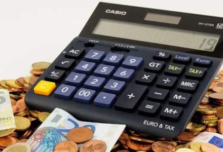 Raducu: Am fi avut rata de absorbtie 90-95% a fondurilor UE, dar proiectele nationale nu respecta toate regulile
