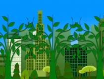 Green Building Council: 14...