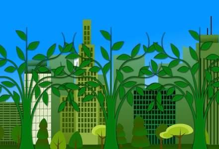 Green Building Council: 14 proiecte rezidentiale cu peste 4.000 de locuinte sunt certificate sau in curs de certificare de constructii verzi