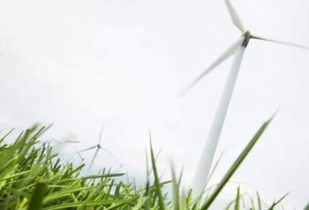 BERD: O curatare a pietei de energie verde ar fi benefica