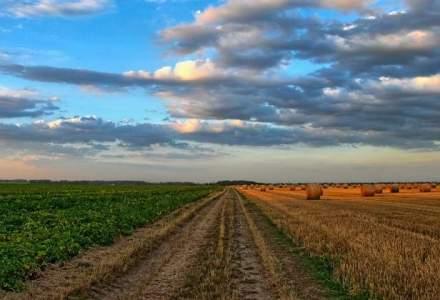 Hugh Beirne, Avalon Comp: Investitorii din agribusiness vor continua sa vina in Romania
