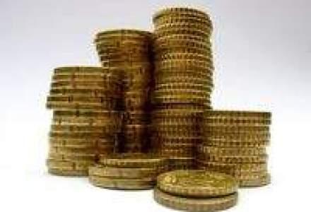 Miliardarul Ioan Niculae investeste 10 mil. de lei intr-o sera de rosii