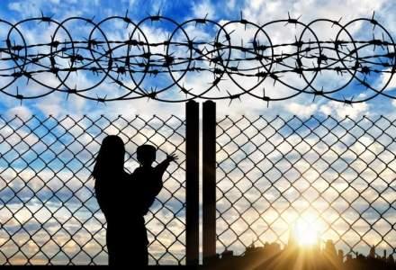 Sirieni prinsi cand voiau sa iasa din Romania pe jos prin camp