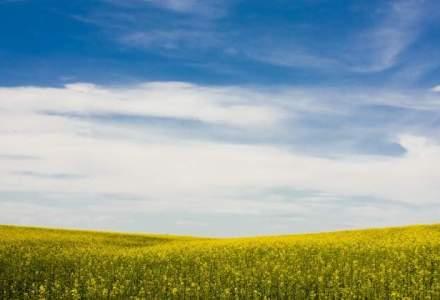Bunge Prio se asteapta la un an record pentru importul de biodiesel