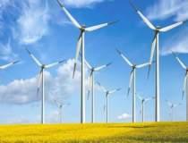 Energie verde castiga teren:...