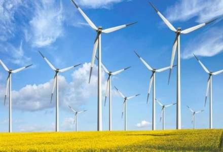 Productia de energie verde a reprezentat anul trecut 12,5% din total, cel mai mare procent de pana acum